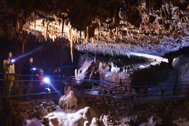 visite libre Anecat Grottes de France aven-grotte-forestiere ardèche