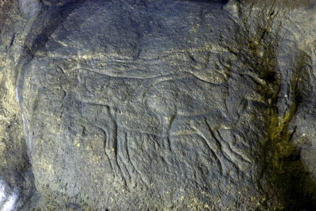 grottes-prehistoriques-isturitz-oxocelhaya-h-rennes