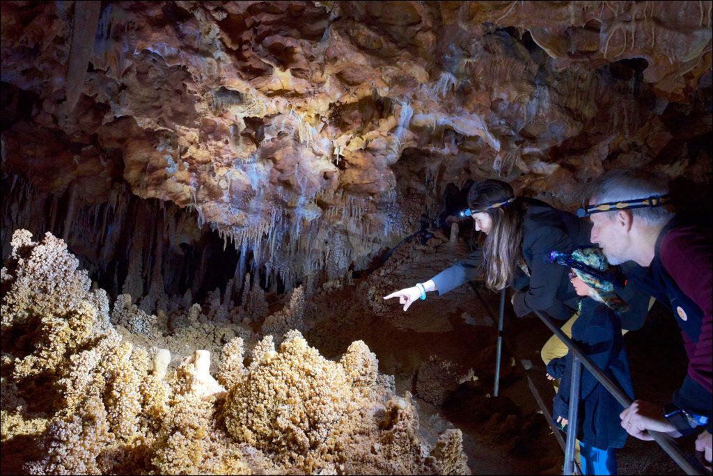 visite-aven-grotte-forestiere-ardeche
