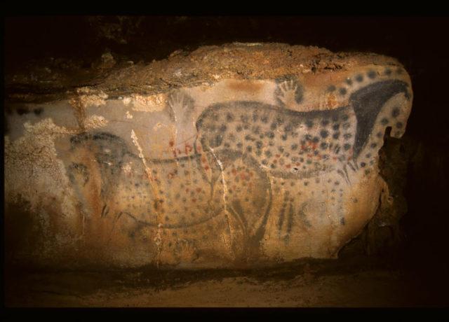 grotte prehistorique grottes du lot pech merle