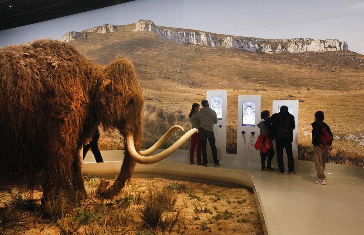 activité culturelle autour des grotteschauvet2_galerieaurignacien