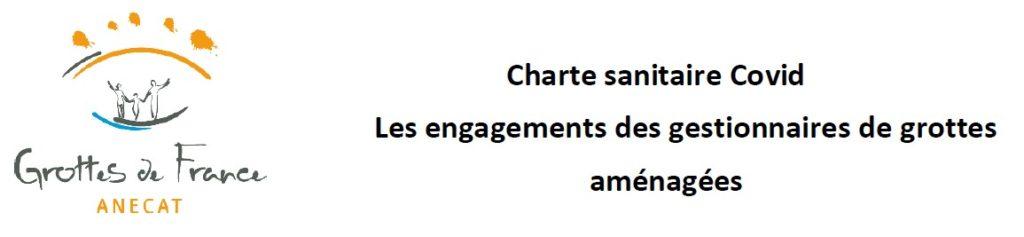 image_chartecovid